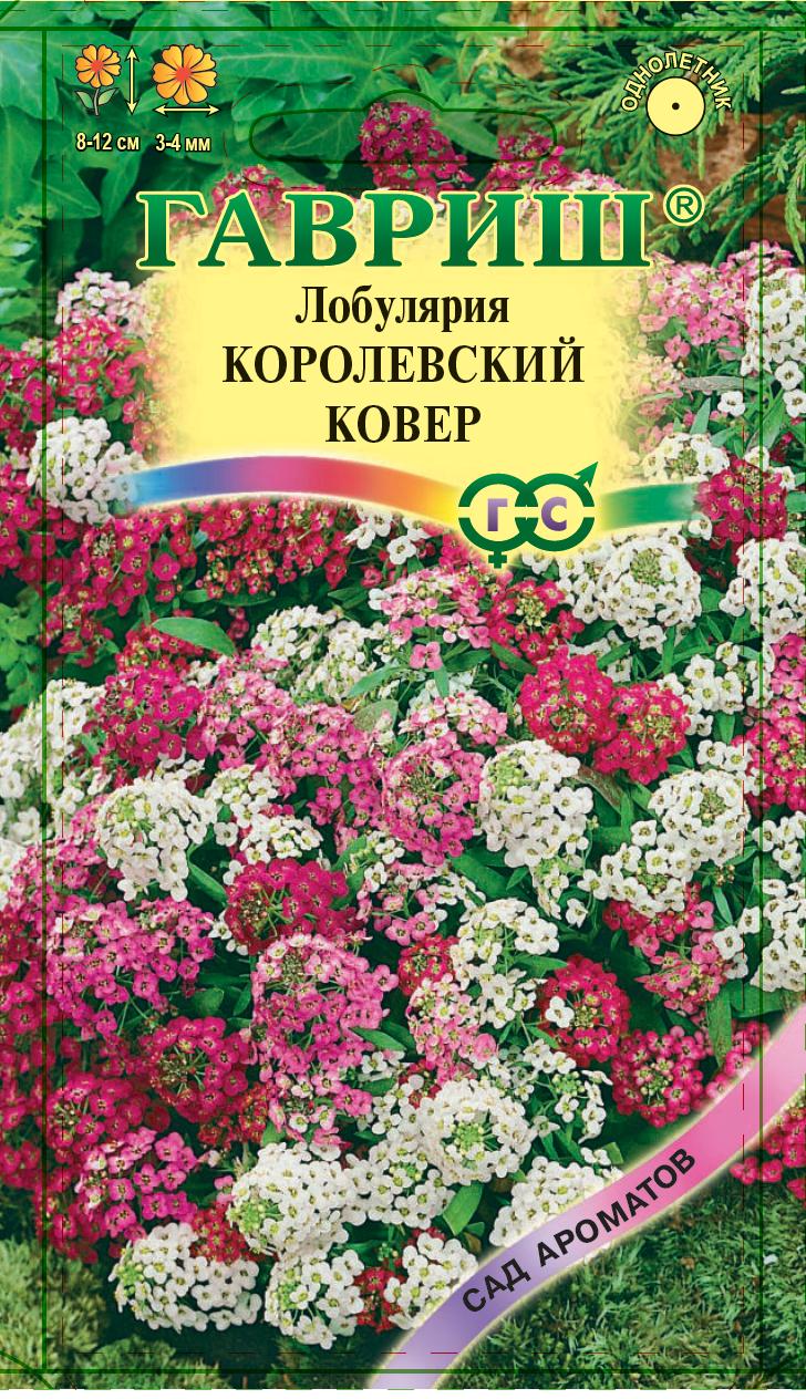 Алиссум Королевский ковер* 0,1 г серия Сад ароматов Н9