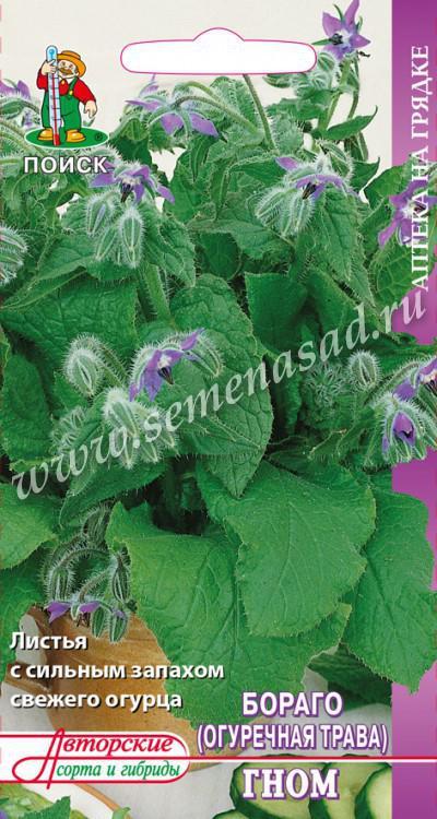 Огуречная трава (Бораго) Гном(А) (ЦВ) 0,5гр.