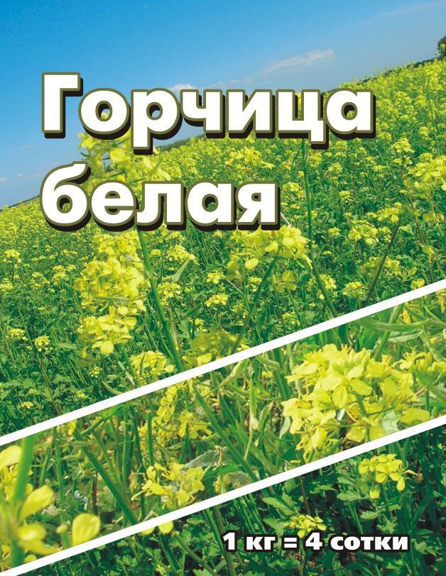 Горчица белая рядовая, коробка 1 кг (уп.14шт)