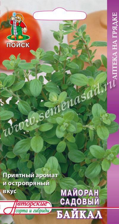 Майоран садовый Байкал(А) (ЦВ) 0,1гр.