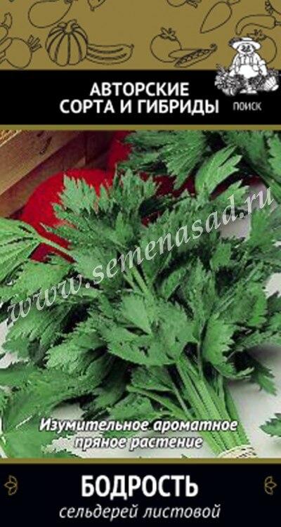 Сельдерей Бодрость листовой (А) (ЦВ) 0,5гр.