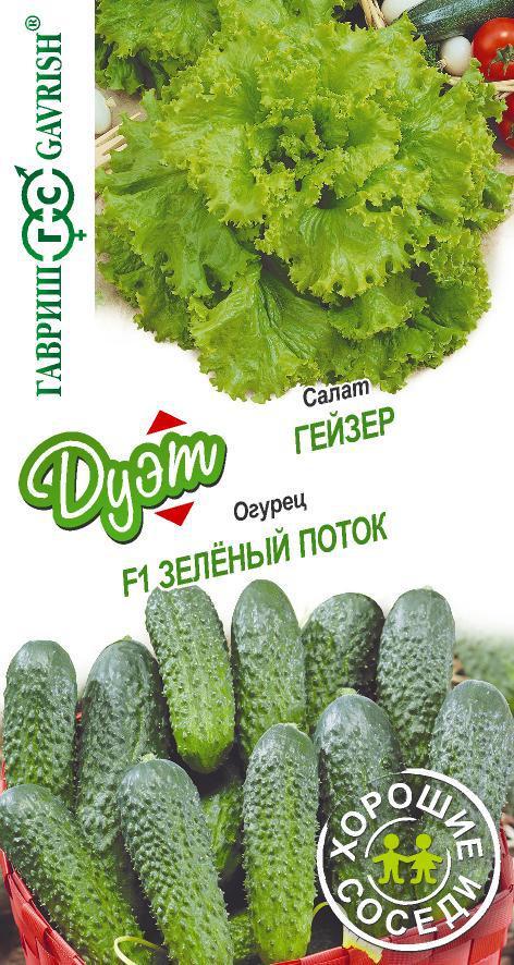 Серия Дуэт Салат Гейзер 0,5 г+Огурец Зеленый поток 0,3 г