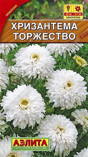 Хризантема Торжество букетная ф.п.0,1г