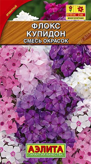 Флокс Купидон, метельчатый многолетний, смесь ф.п.0,1г