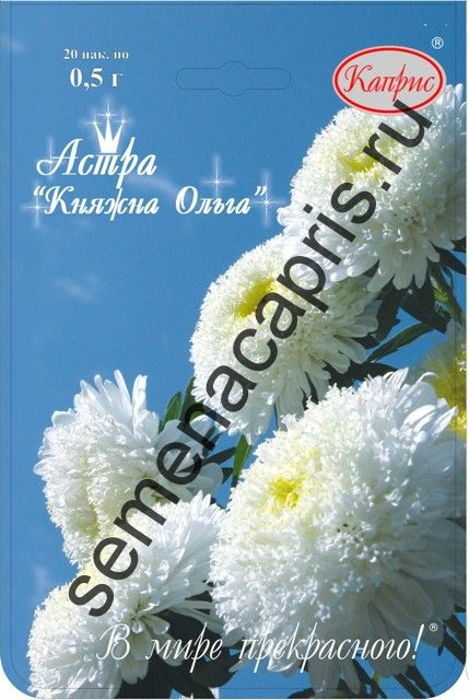 Астра Принцесса Белая (Княжна Ольга) 0,5г (уп.20шт)