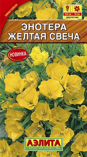 Энотера Желтая свеча ф.п.0,2г