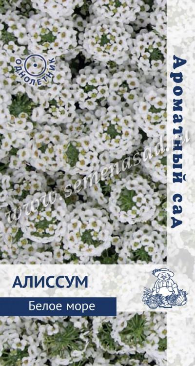 """Алиссум Белое море (ЦВ) (Ароматный сад """"1) 0,3гр"""